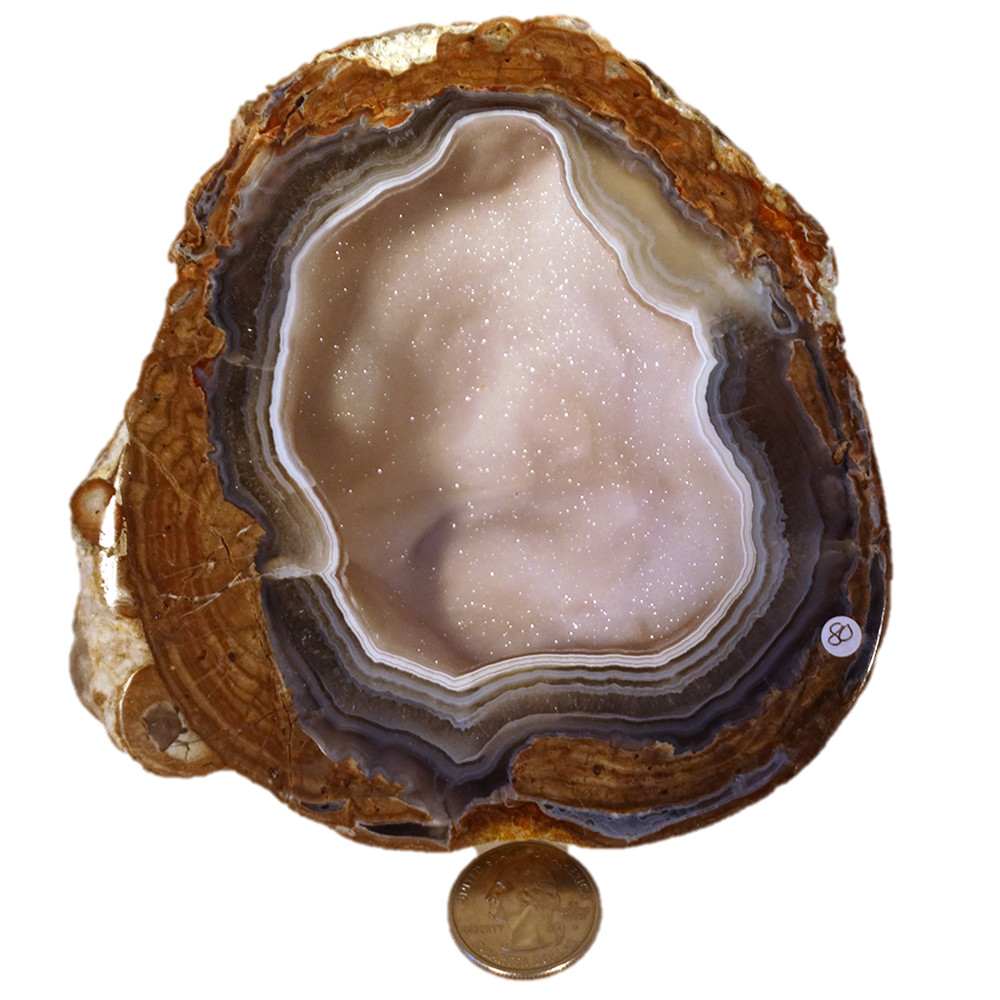 Dugway Geode Utah Polished Surface1045