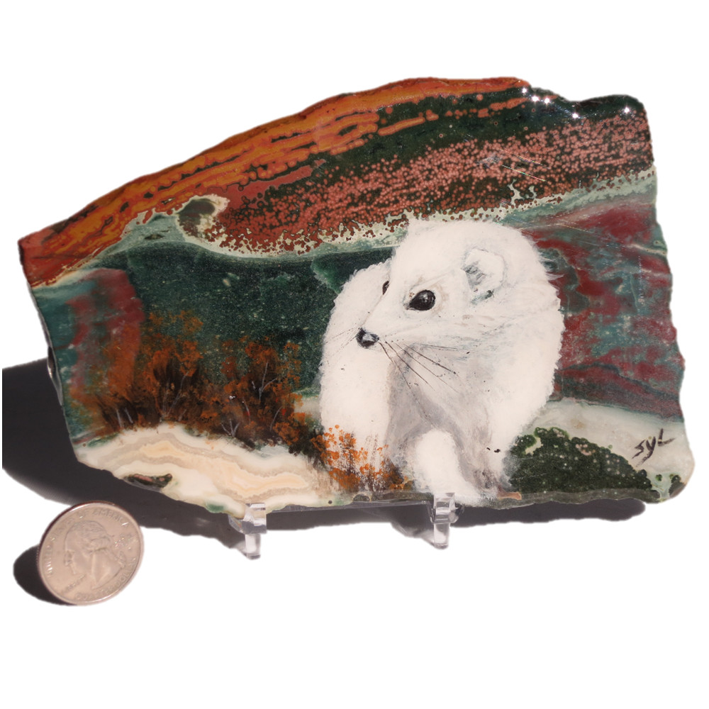 Ermine on Ocean Jasper 1076